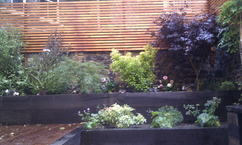 multi-level-deck-london-with-mixed-plants-and-privacy-screens.jpg