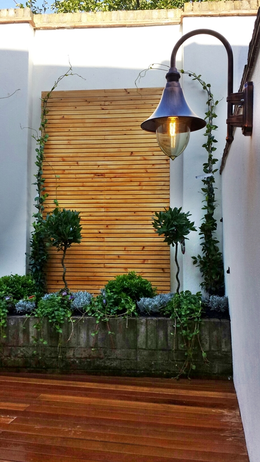 decking courtyard garden formal topiary planting