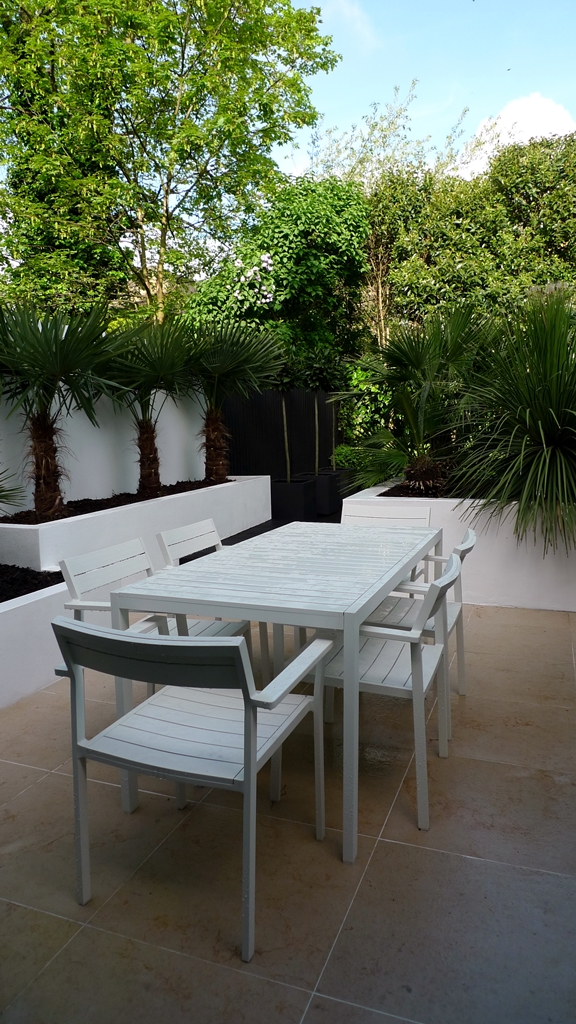 Raised white render plastered beds Moleanos Limestone paving tiles with decking stain matt black Architectural planting with buxus topiary and floating black bench Garden Design and Build Brixton London