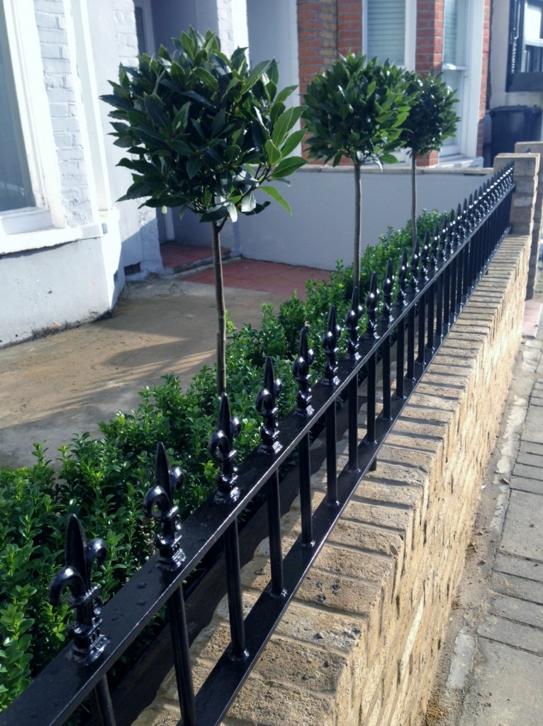Yellow brick garden wall metal rail and gate bay and buxus topiary Clapham Battersea Balham London (12)