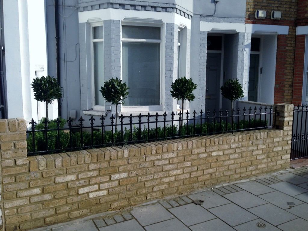 Yellow brick garden wall metal rail and gate bay and buxus topiary Clapham Battersea Balham London (5)