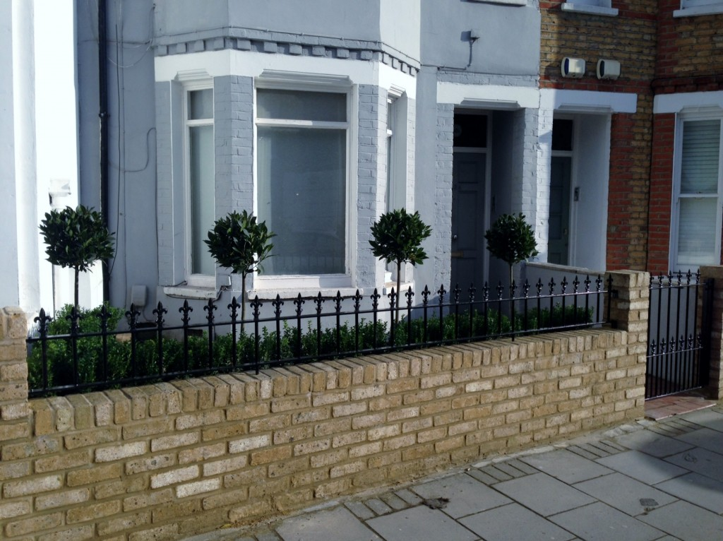 Yellow brick garden wall metal rail and gate bay and buxus topiary Clapham Battersea Balham London (6)