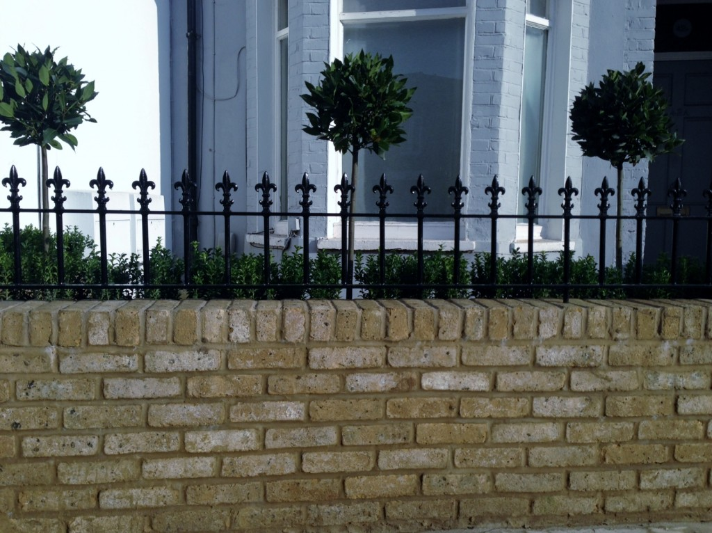 Yellow brick garden wall metal rail and gate bay and buxus topiary Clapham Battersea Balham London (9)