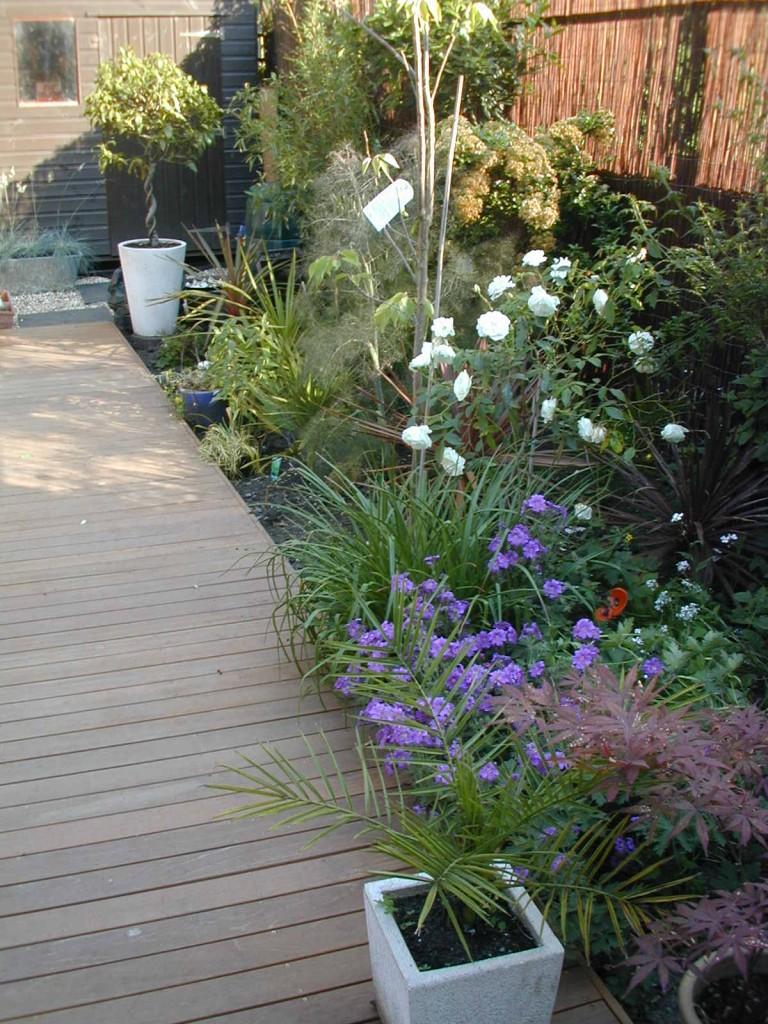 Small garden design designer clapham balham dulwich (14)