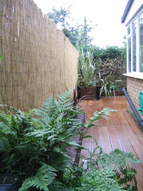 Small garden design designer clapham balham dulwich (29)