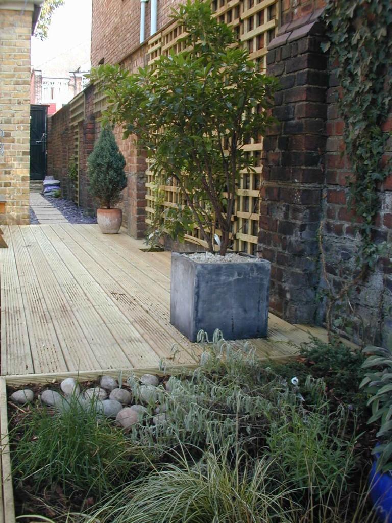 Small garden design designer clapham balham dulwich (46)