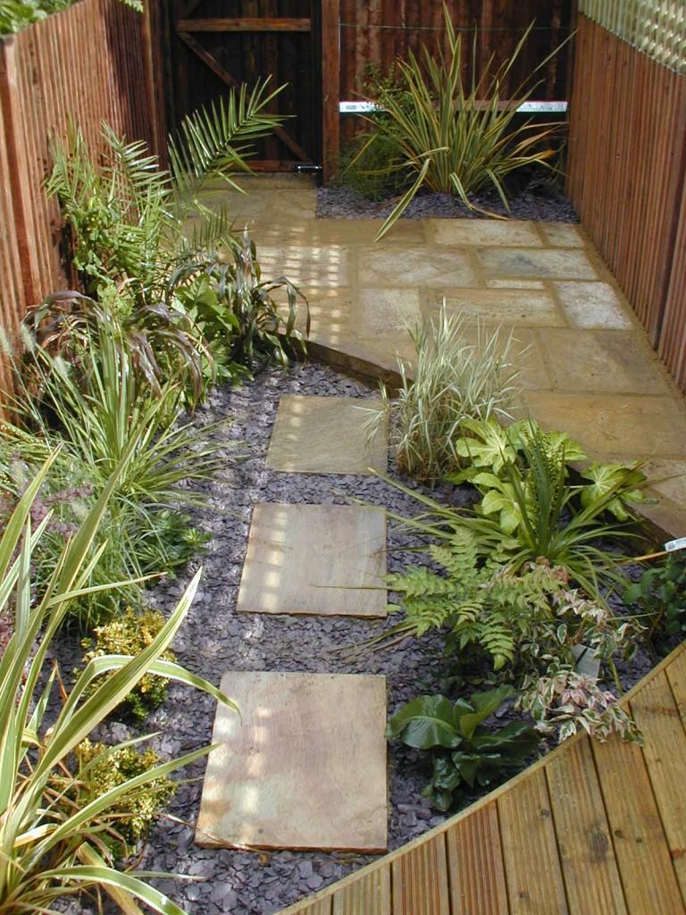 Small garden design designer clapham balham dulwich (7)