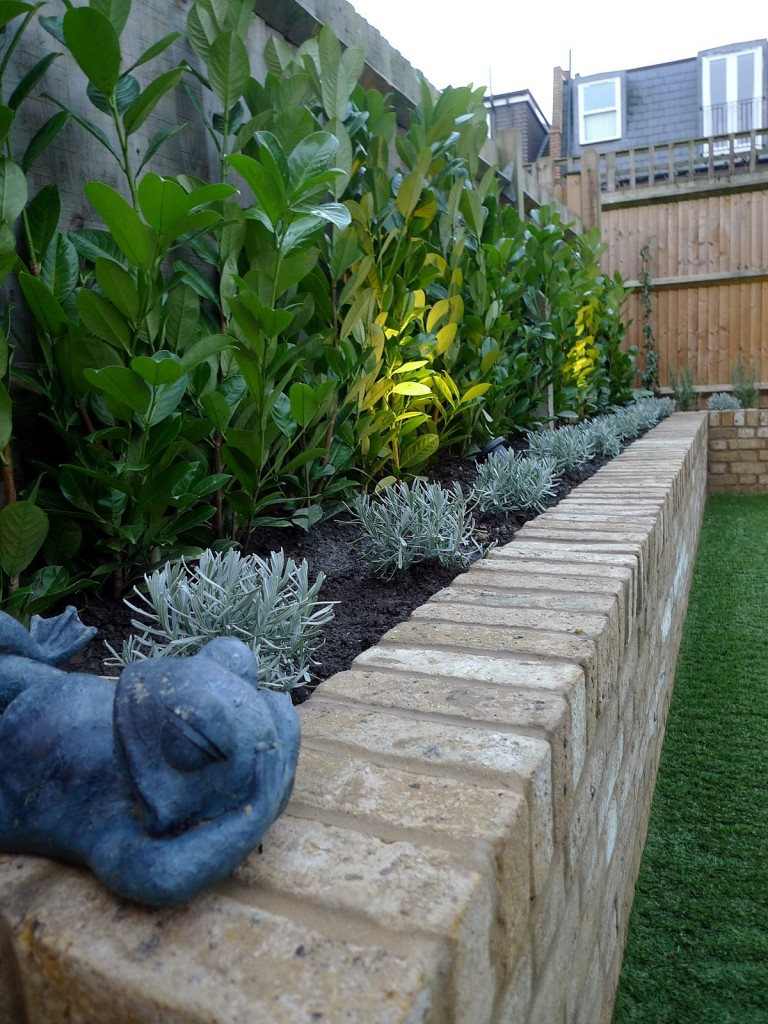 Yellow brick raised bed walls artificial fake easy grass lawn mixed planting herne hill dulwich london (13)
