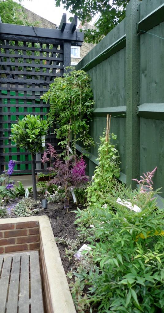 garden walls pergola paving steps planting design designer streatham dulwich clapham london (13)