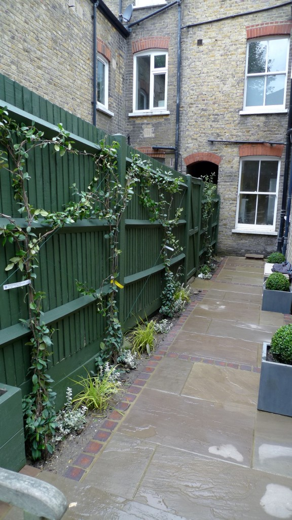 garden walls pergola paving steps planting design designer streatham dulwich clapham london (24)