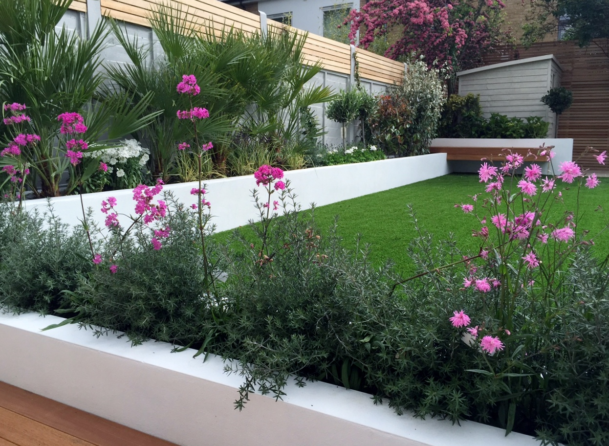 Modern garden design ideas fulham chelsea battersea for Arbustos de jardin