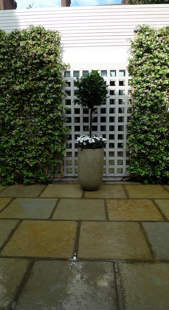 paving patio rustic limestone topiary trllis screen painted walls low maintenance landscape gardening designer design london fulham chelsea wandsworth battersea london