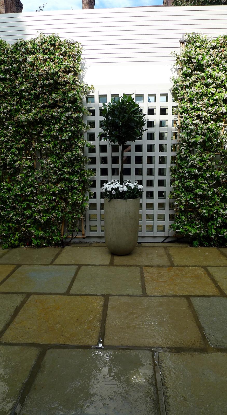 Classic low maintenance planting court yard garden Design