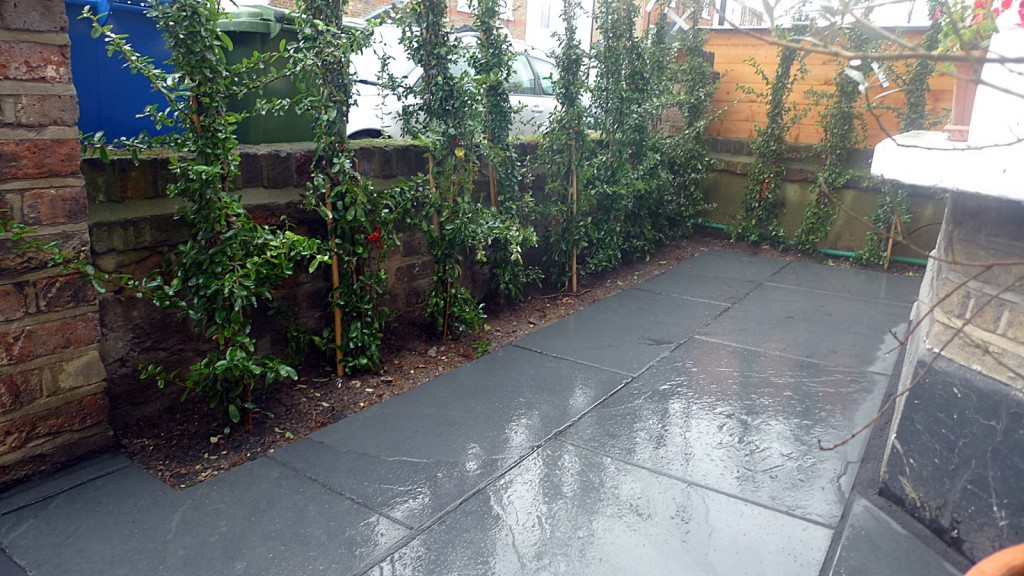Planting tile grey path classic modern front garden London Dulwich Forest Hill