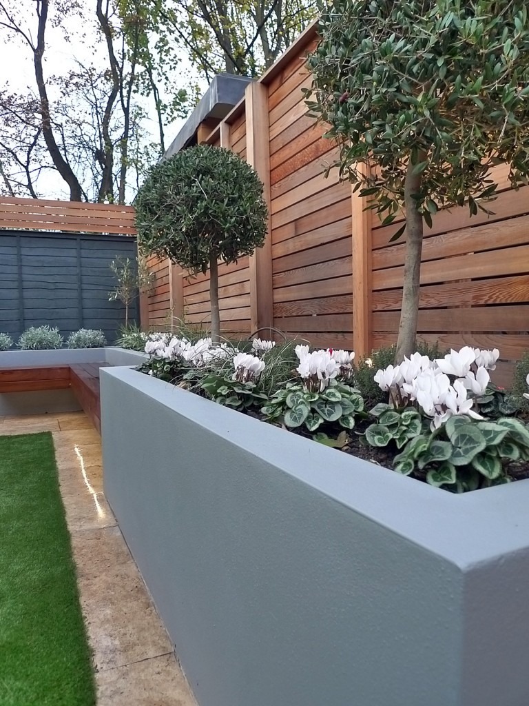 Modern Garden Design fence grey colour scheme planting topiary easi grass London Dulwich Streatham Chelsea Fulham